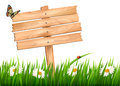 Nature background with green grass and flowers and wooden sign vector Royalty Free Stock Photo