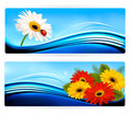 Nature banners with color flowers vector Stock Photography