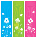 Nature banners themed with flowers and butterflies Stock Images