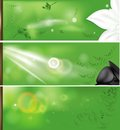 Nature banners three cute easy to edit vector Stock Images