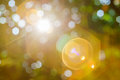 Nature bokeh and sun light flair. Royalty Free Stock Photo