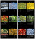 Nature calendar for colorful english in black background Royalty Free Stock Image