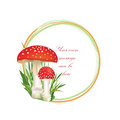 Nature frame with fall leaves and mushroom isolated on white background autumn circle shape toadstool illustration red amanita Royalty Free Stock Photos