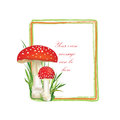 Nature frame with fall leaves and mushroom isolated on white background autumn circle shape toadstool illustration red amanita Royalty Free Stock Photography