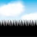 Nature grass field background