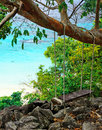 Nature green jungle on beach background Stock Photos