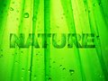 Nature illustration of and ecology in green colors Royalty Free Stock Image