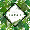 Nature illustration the inscription of Hawaii in a rhombus. Royalty Free Stock Photo