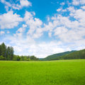 Nature landscape background with grass, meadow and blue sky Royalty Free Stock Photo