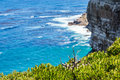 Nature landscape next to cape town city oceanscape with high cliff Royalty Free Stock Photos