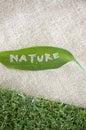 Nature Leaf On Sackcloth
