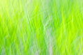 Nature Motion Blur Green Backg...