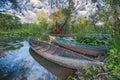 Nature park Hutovo Blato, Bosnia and Herzegovina Royalty Free Stock Photo