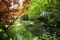 Nature park scenery hangzhou in spring xihu lake china plants and water Stock Image