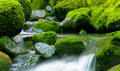 Nature Peaceful Green Cascading Waterfall Royalty Free Stock Photo