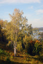 Nature of Ples town, Russia, and the Volga river. Autumn nature.