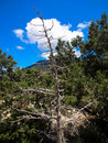 Nature In Rhodos