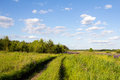 The nature of russia road in a wild field of flowers photo was taken central Royalty Free Stock Photos