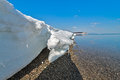 The nature of sakhalin island russia pack ice on coast okhotsk sea Stock Photos