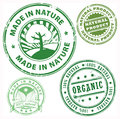 Nature Stamps Set
