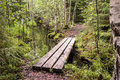 Nature trail with small board bridge leading over a ditch Royalty Free Stock Photo