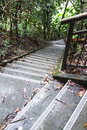 Nature trail walk downhill or uphill with steep stairway Stock Images