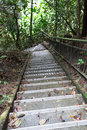 Nature trail walk downhill or uphill with steep stairway Stock Photos