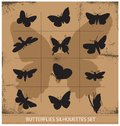 Nature various vector symbolical butterflies set isolated Royalty Free Stock Photo
