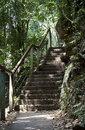 Natures staircase Royalty Free Stock Photo