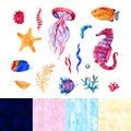 Nautical elements, sea life, fish, seahorse, starfish, coral, algae. Watercolor illustration, isolated on white