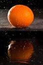 Navel orange Stock Photos