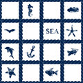 Navy blue rope lattice on white geometric seamless pattern with grunge sea symbols - fishes, dolphin, anchor, starfish, vector Royalty Free Stock Photo