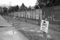 Nazi auschwitz the historic concentrantion camp of in poland Royalty Free Stock Photo