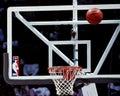 NBA Glass backboard.