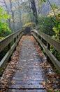 NC Pedestrian Footbridge Autumn Rain Royalty Free Stock Photo