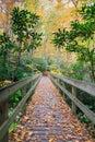 NC Pedestrian Footbridge Autumn Royalty Free Stock Photo