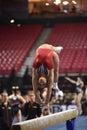 2015 NCAA Gymnastics - Maryland