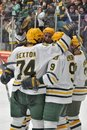 NCAA Ice Hockey Game in Clarkson University Stock Image