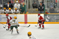 NCAA Ice Hockey Game in Clarkson University Royalty Free Stock Photography