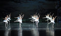 The neat in formation of ballet ballet swan lake december russia s st petersburg theater jiangxi nanchang performing Stock Image