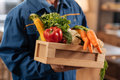 Neat nice courier holding a box full of healthy foods Royalty Free Stock Photo