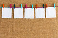 Neat row of hanging blank white notepads Royalty Free Stock Photo