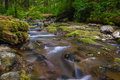 Necarney Creek Royalty Free Stock Photo