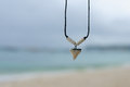 Necklace with a shark's tooth Royalty Free Stock Photo