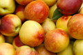 Nectarine Royalty Free Stock Image