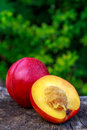 Nectarine cut in half lying on a wooden trunk Royalty Free Stock Image