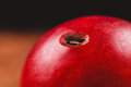 Nectarine with hole in it a red a from a worm Stock Photo