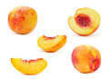 Nectarine peach family fruit set Royalty Free Stock Image