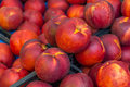 Nectarines in the market new harvest fresh closeup view Stock Images