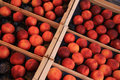 Nectarines at a market in wooden crates french Royalty Free Stock Image